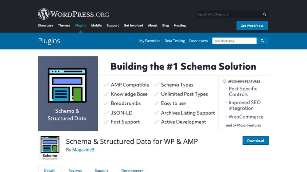 Schema and Structured Data