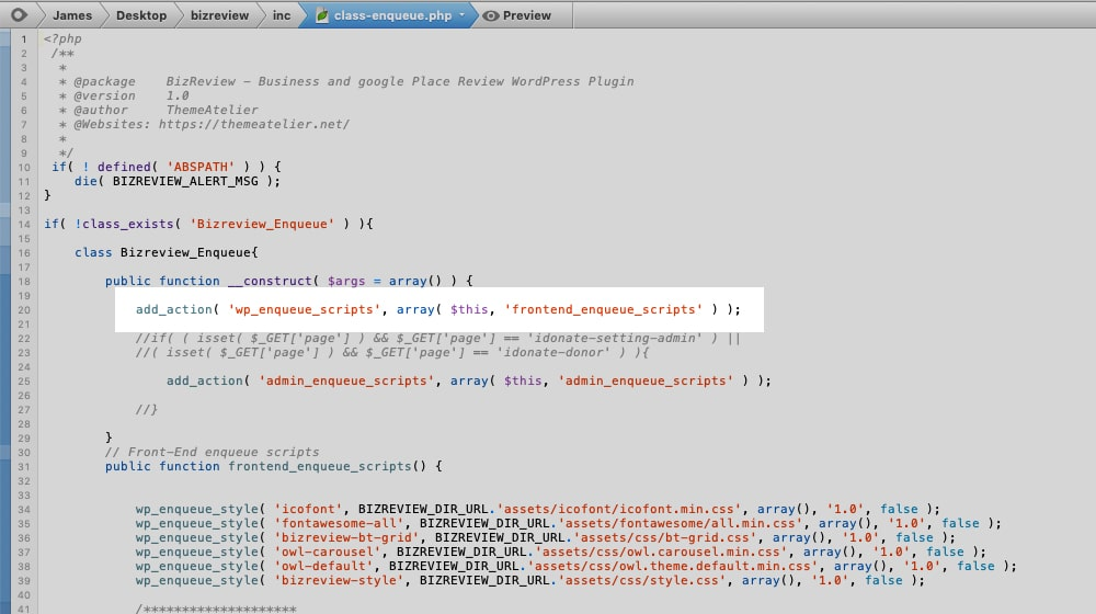 Enqueue Scripts in Code