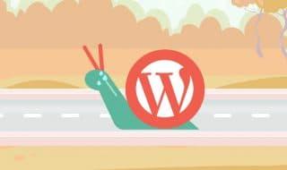 Slow Wordpress Site